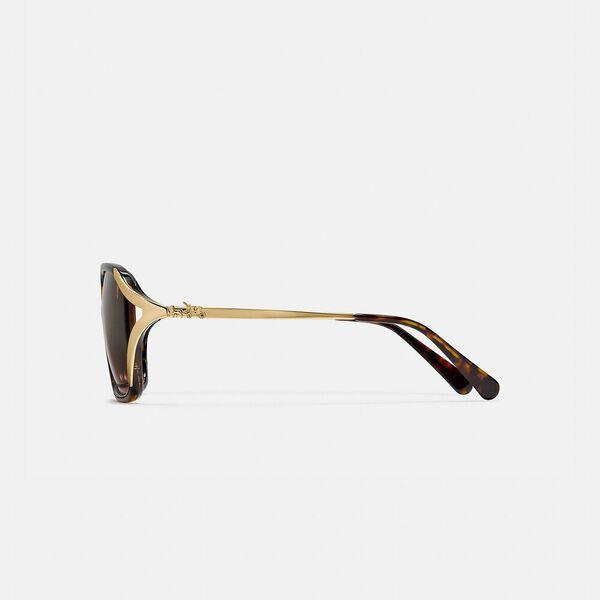Oversized Horse And Carriage Sunglasses, DARK TORTOISE, hi-res