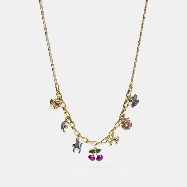 Charming Charm Necklace