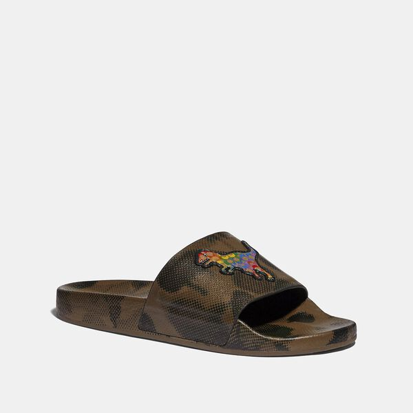 Slide With Rainbow Signature Rexy, WILDBEAST MULTI, hi-res
