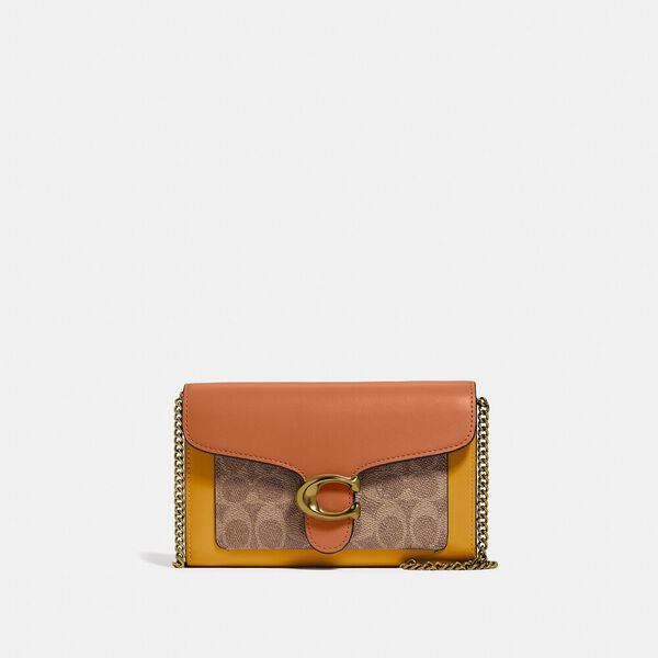 Tabby Chain Clutch In Colorblock Signature Canvas, B4/TAN CANYON MULTI, hi-res