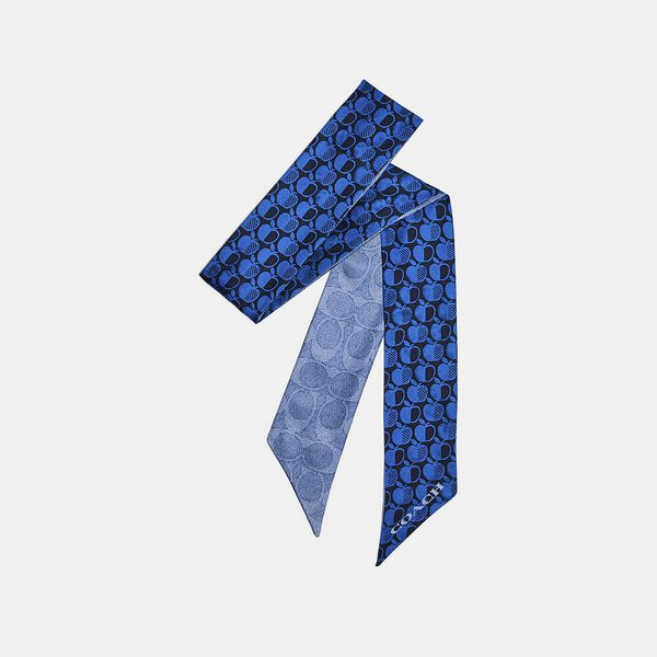 Signature Apple Print Skinny Scarf, PACIFIC BLUE/WATERFALL, hi-res