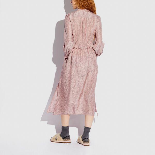 Ruffle Front Dress With Gathered Yoke, BLUSH, hi-res