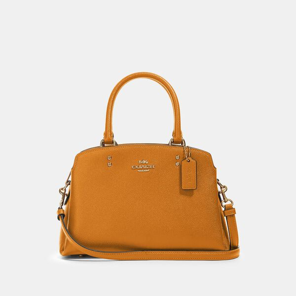 Mini Lillie Carryall