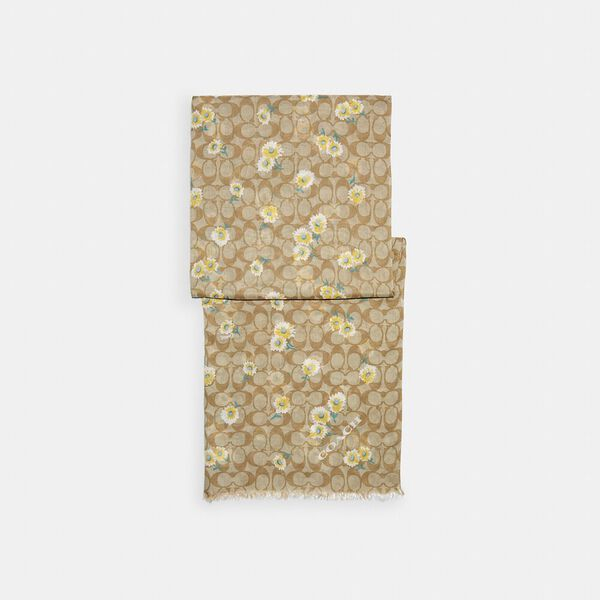 Signature Daisy Print Oblong Scarf, LIGHT KHAKI/YELLOW, hi-res