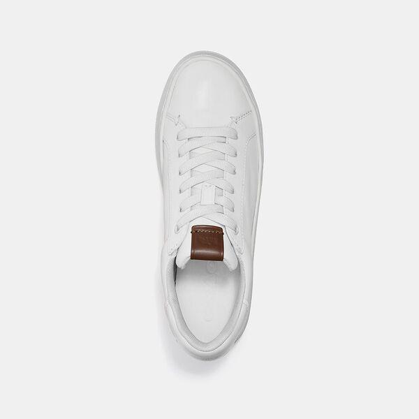 Lowline Low Top Sneaker, WHITE, hi-res